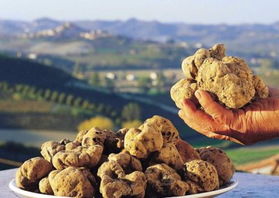 Tartufo Acqualagna
